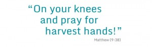 on-your-knees-quote